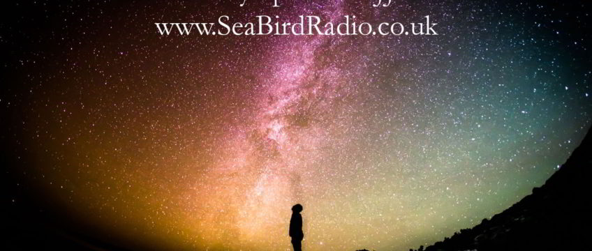 Chart Success for SeaBird Radio