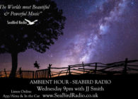Ambient Hour Winter Shows